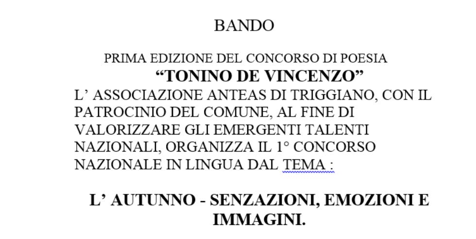 Prima edizione del concorso di poesia Tonino de Vincenzo